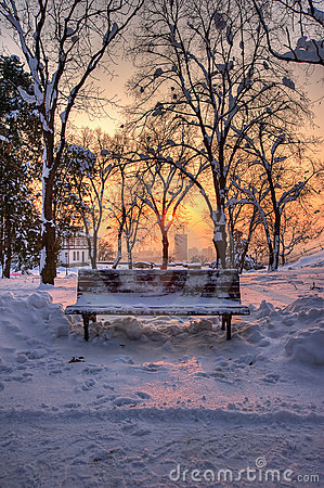 Bench in a park in winter sunset landscape