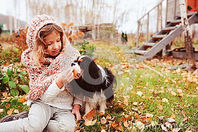 Autumn portrait of happy kid girl playing with her spaniel dog in the garden