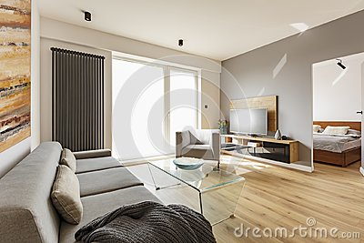 Side view of a modern living room interior with a sofa, armchair