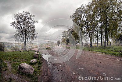 The road to the fog. Tver. Russia.