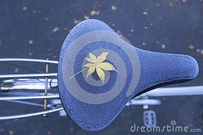 A yellow maple leave on frozen bicycle seat during Autumn