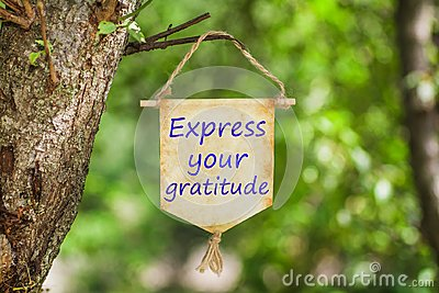 Express your gratitude on Paper Scroll