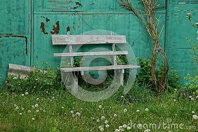 Old wooden bench in the green grass near the wall