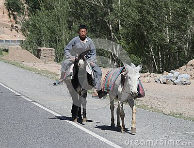 Afghanistan village street life in the west in the summer of 2018