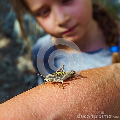 Big grasshopper and cute little girl, nature and clearness