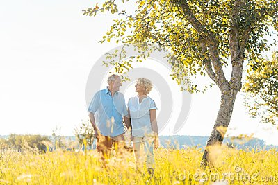 Romantic senior couple holding hands while walking together in a field