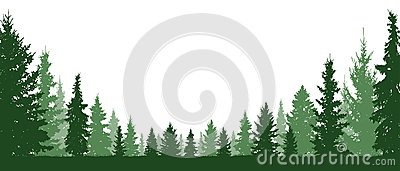 Forest evergreen, coniferous trees, silhouette vector background.