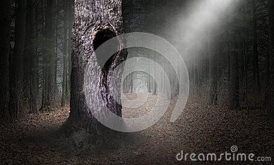 Hollow Tree Surreal Forest Background, Dark Woods