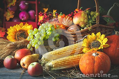 Happy Thanksgiving Day background, wooden table decorated with Pumpkins, Maize, fruits and autumn leaves. Harvest