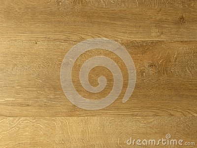 Fine oak tree wood texture pattern background. Exquisite Design Oak Wood Grain.