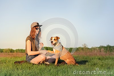 Female dog owner and trained staffordshire terrier giving paw
