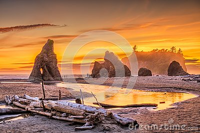 Olympic National Park, Washington, USA at Ruby Beach