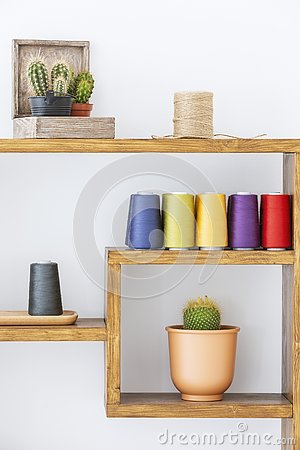 Cacti and colorful yarns on wooden shelves in scandi modern living room interior. Real photo