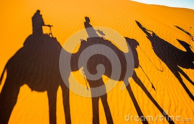 Shadows of Camels in the sand of the Sahara desert - Morocco