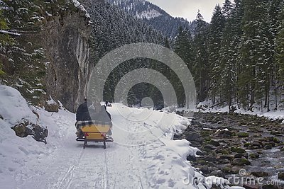 Sleigh rides in the Tatras, sleighs along the stream