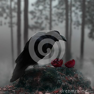 Raven In A Misty Forest With A Bloody Red Pomegranate