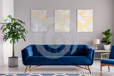 A dark blue velvet couch in front of a gray wall with graphic paintings in a modern living room interior. Real photo.