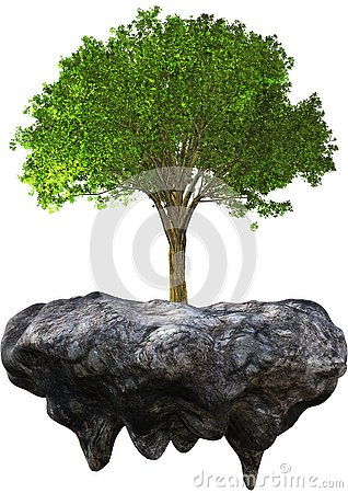 Environment, Environmentalism, Tree, Nature, Isolated
