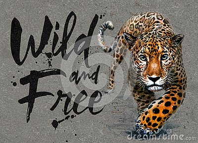 stock image of jaguar watercolor painting with background, predator animals wildlife, wild and free wildlife print for t-shirt
