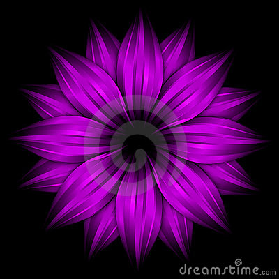 Abstract Purple Flower On Black Background