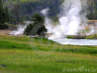 Firehole River, Yellowstone N. P.