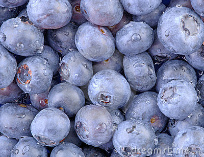 Blue Blueberries-Horizontal