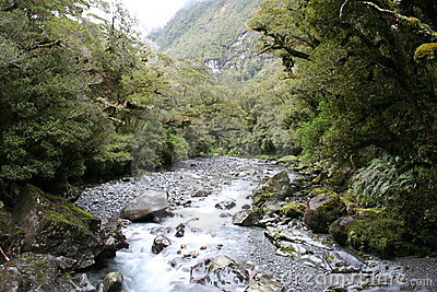 A river runs thru it, New Zealand