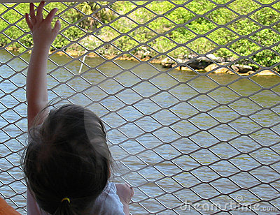 Girl reaching on fence