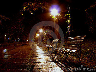 A bench to rain