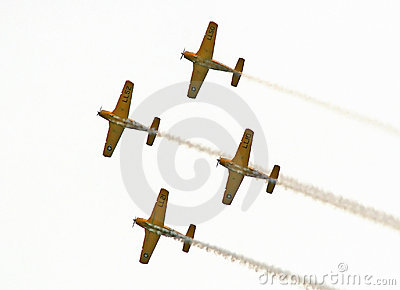 Navy Aerobatic Team 2