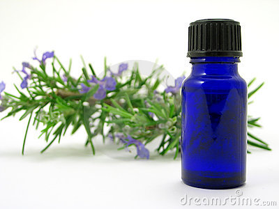 Rosemary herb & Oil bottle