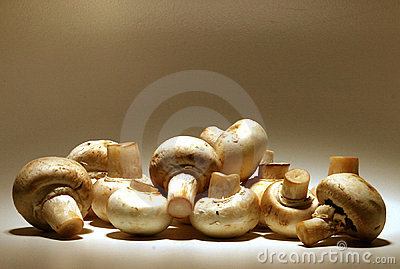Sepia Mushrooms