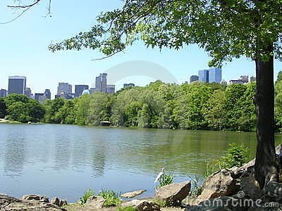 New York City From Central Park Turtle Lake.