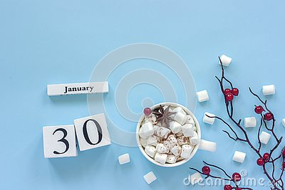 Calendar January 30 Cup of cocoa, marshmallows and branch berries