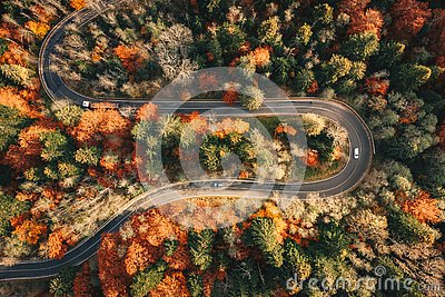 Winding mountain road trough the forest in the autumn with cars