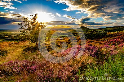 Sunset at Roseberry Topping, North Yorkshire