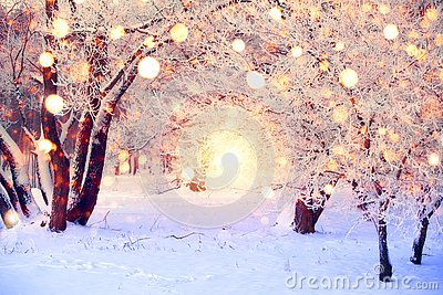 Winter forest with colorful snowflakes. Snow covered trees with christmas lights. Christmas wonderland background. Beautiful New