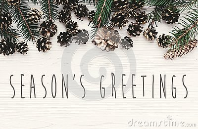 Season`s greetings text on modern christmas flat lay with green