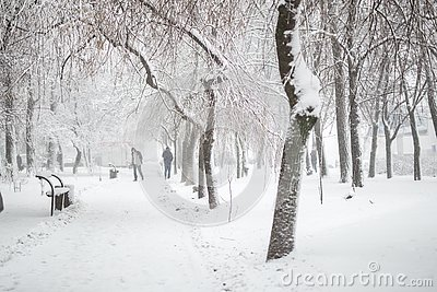 City park in winter. Walkway and benches covered with snow. Town recreation area after snowfall. Winter weather forecast. Heavy