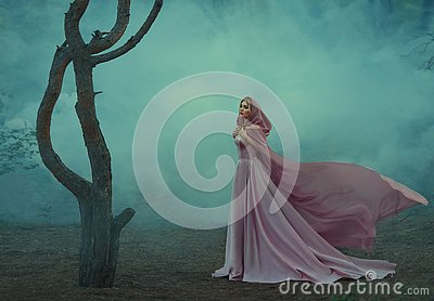 Gorgeous young elf princess with blond hair, dressed in an expensive luxurious long gentle pink dress, holding a light