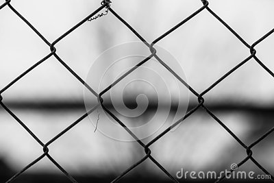 Garden wire fence close up macro shot at correctional institute