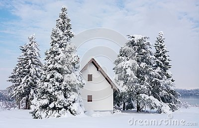 Winter scene, rural house and snow pine trees