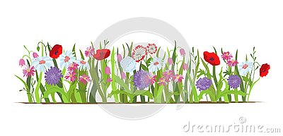 Flowerbed. Set of wild forest and garden flowers. Spring concept. Flat vector flower illustration isolate on a white