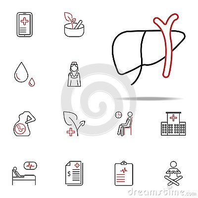 liver herpetology colored line icon. Medical icons universal set for web and mobile