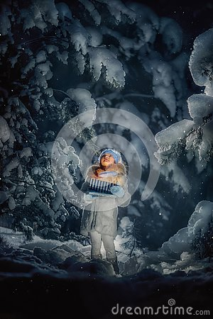 Night in the snowy forest