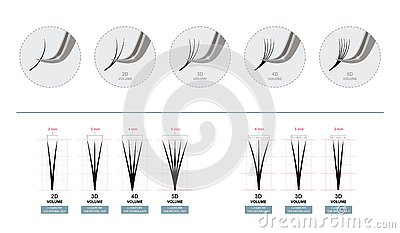 Volume Eyelash Extensions. Artificial Lashes. Master of Eyelash Extensions works with Tweezers. Vector Illustration