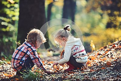 Kids activity and active rest. Children pick acorns from oak trees. Brother and sister camping in autumn forest. Little