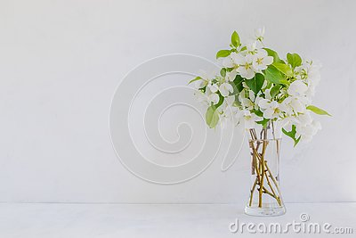 White flowers in a vase on a light background