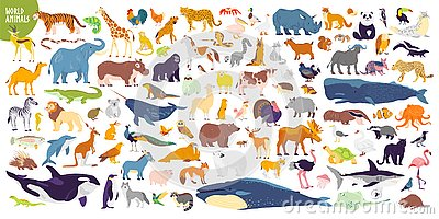 Big vector set of different world wild animals, mammals, fish, reptiles and birds. Rare animals. Funny flat characters, good for b