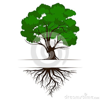 Oak a green life tree with roots and leaves. Vector illustration icon isolated on white background